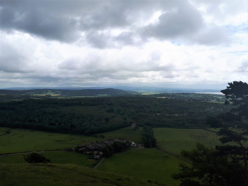 View from Arnside Knott
